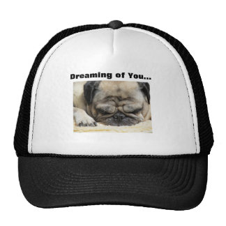Happy Valentines Day Funny Puppy Hats