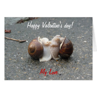 Happy Valentines Day Funny Snails In Love Kissing Card