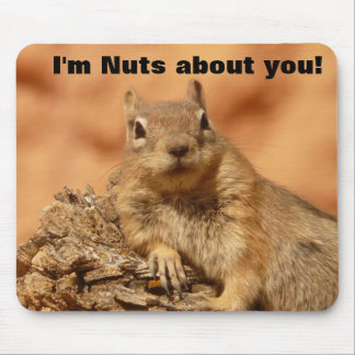 Happy Valentines Day Funny Squirrel Mouse Pad