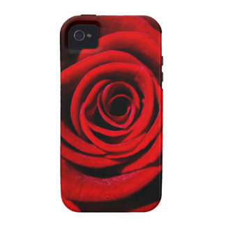 Happy Valentines Day Red Rose iPhone 4/4S Case