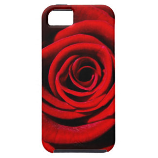 Happy Valentines Day Red Rose iPhone 5 Covers