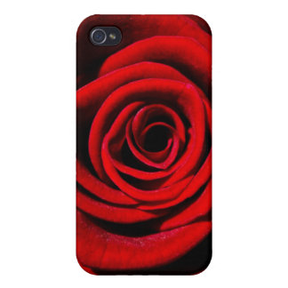 Happy Valentines Day Red Rose iPhone 4 Cases
