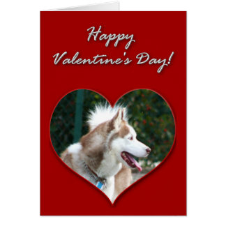 Happy Valentine's Day Siberian Husky Greeting Card