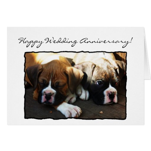 Happy wedding anniversary boxer greeting card zazzle
