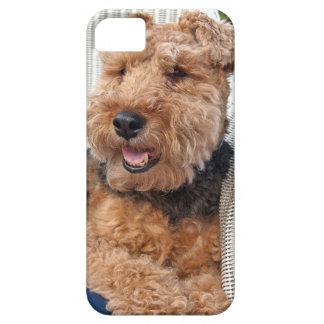 happy Welsh Terrier iPhone SE/5/5s Case