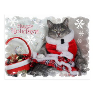 Happy Winter Holidays with Cat Post Cards