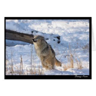 Happy Wolf Card