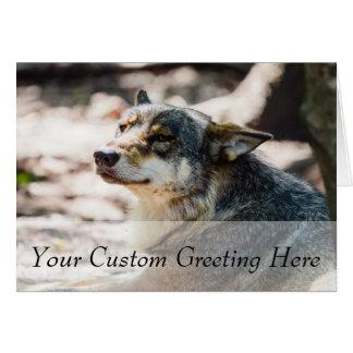 Happy Wolf Portrait, Animal Photography Card