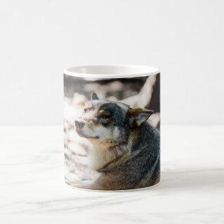 Happy Wolf Portrait, Animal Photography Coffee Mug