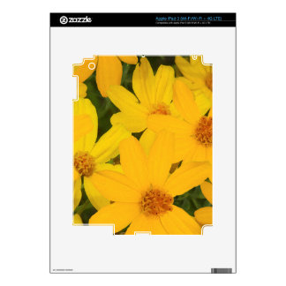 HAPPY YELLOW DAISIES DECALS FOR iPad 3