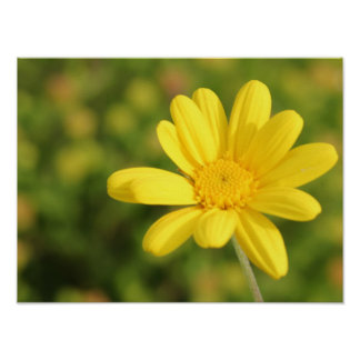Happy Yellow Flower A3 Poster