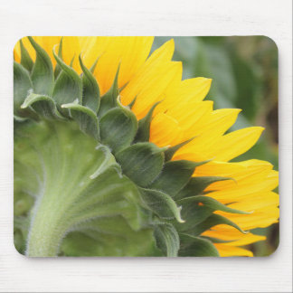Happy Yellow Sunflower Floral Mouse Pad