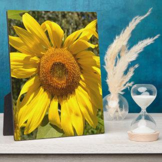 Happy Yellow Sunflower Photo Plaque