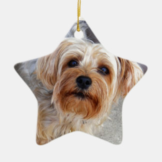 Happy Yorkie Puppy Ceramic Ornament