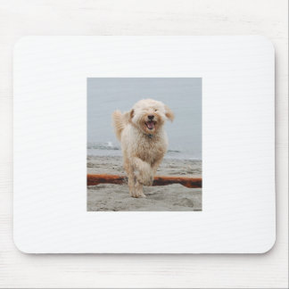 happyChuck3 Mouse Pad