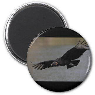 Harbinger of Spring 2 Inch Round Magnet