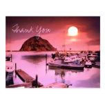 Harbor Hues Painting Thank You Postcard