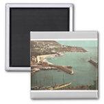 Harbor, Nice, France vintage Photochrom Refrigerator Magnet