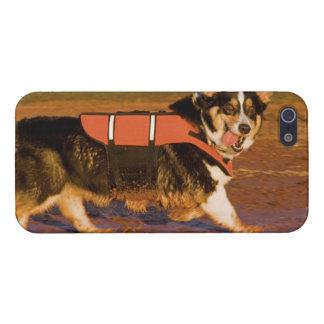 Harbor Patrol Case For iPhone SE/5/5s