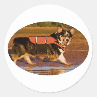 Harbor Patrol Classic Round Sticker