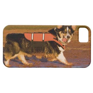 Harbor Patrol iPhone SE/5/5s Case