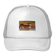 Harbor Patrol Trucker Hats