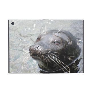 Harbor Seal Cases For iPad Mini