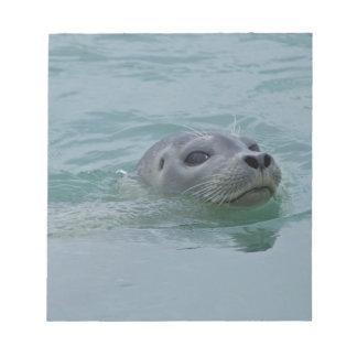 Harbor Seal swimming in Jokulsarlon glacial lake Notepad