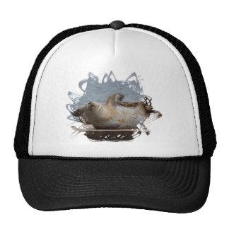 Harbor seal trucker hat