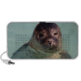 Harbor Seals Speakers
