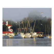 Harbor Shrimp Boats at Morning Photo Print