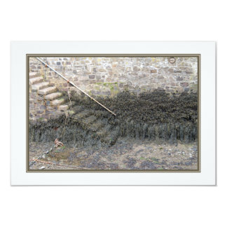 Harbor Steps at Low Tide. Personalized Invitation