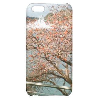 Harbor Tree iPhone 5C Cover