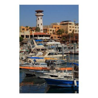 Harbor waterfront in Cabo San Lucas Posters