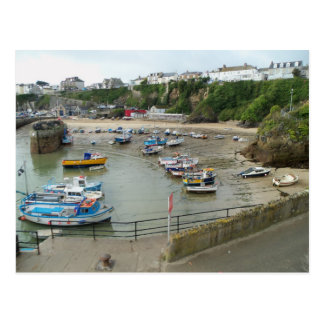 Harbour Life Postcard
