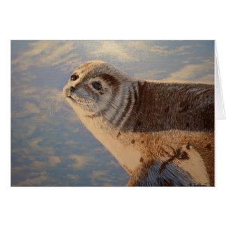 Harbour Seal P.E.I. Card