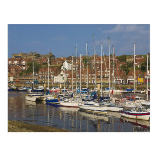Harbour, Whitby, North Yorkshire, England Postcard