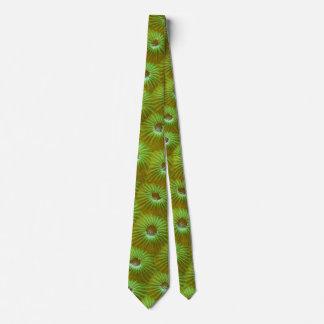 Hard Coral Tie