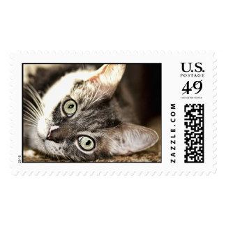 Hard Day Stamp