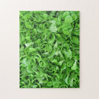 Hard lettuce puzzle