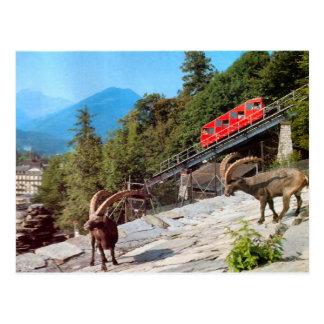 Harder Kulm Funicular Railway, Interlaken Postcard