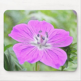 Hardy Geranium In Bloom Mouse Pad