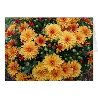 """Hardy Mums"" Stationery Note Card"