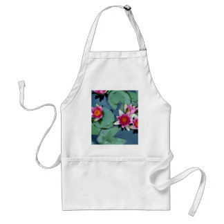 Hardy water lily, red, Nymphaea laydekeri Adult Apron