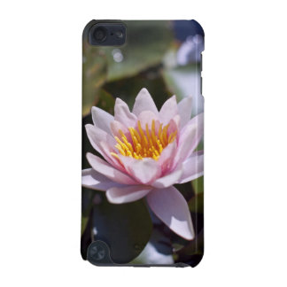 Hardy Water Lily  Speck Case
