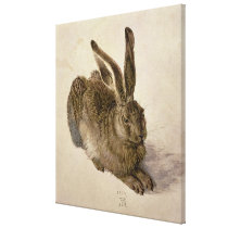 Hare, 1502 canvas print