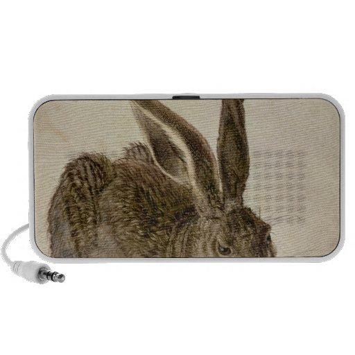 Hare, 1502 speakers