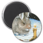 hare 20 Magnet