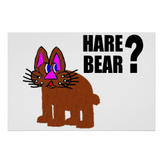 Hare Bear? Poster