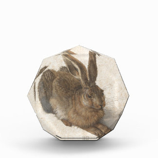 Hare by Albrecht Durer Acrylic Award